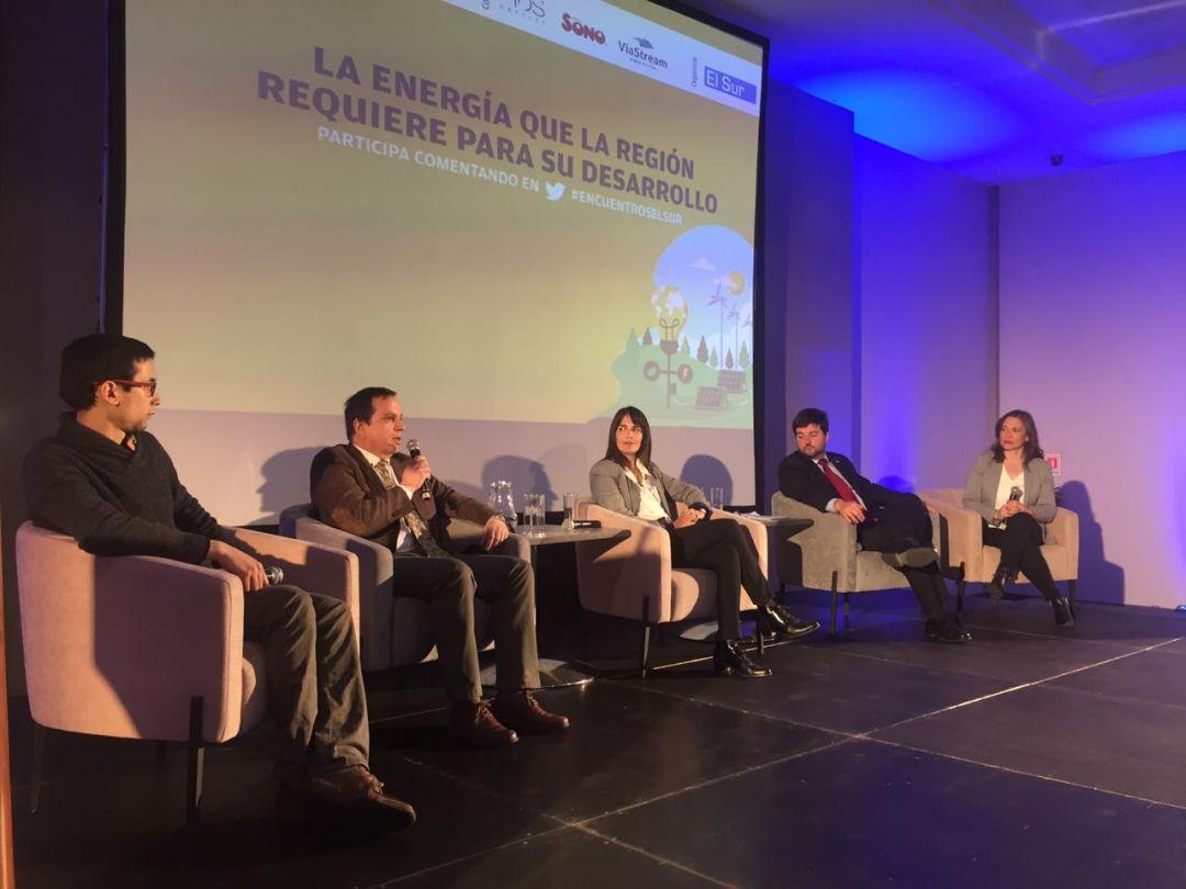"""Decano participó en último encuentro """"El Sur del Futuro"""" sobre energía"""