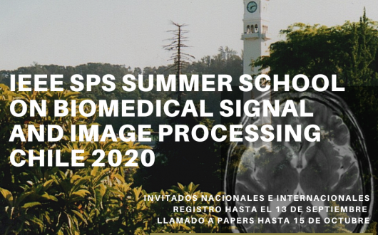 IEEE SPS Summer School on Biomedical Signal and Image Processing – Chile 2020